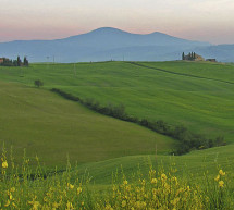 A green island in the centre of Tuscany