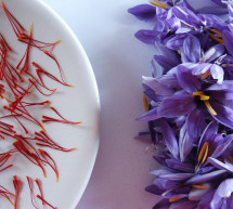 The saffron of San Gimignano